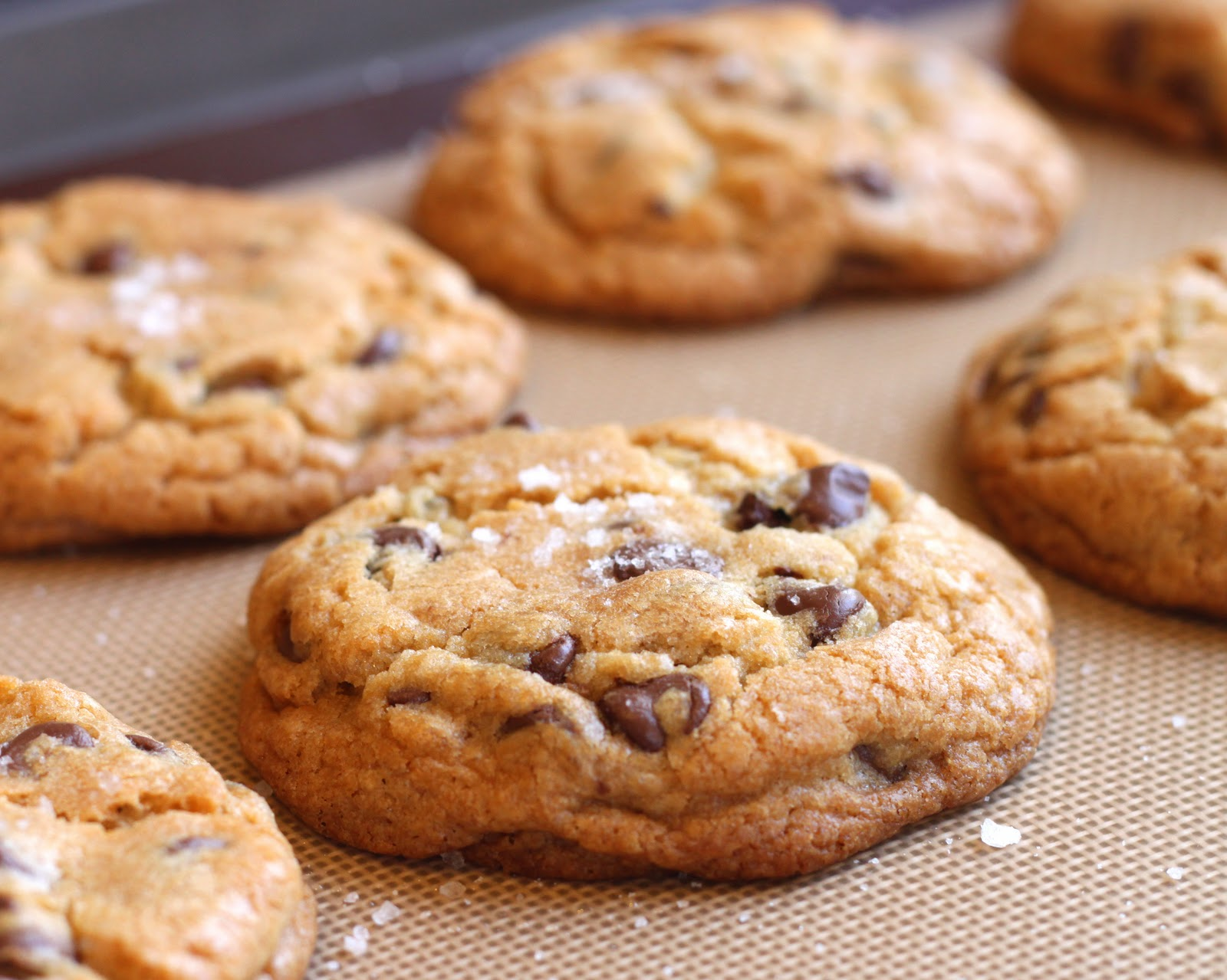 Chocolate Chip Cookie Throwdown! } | TheGrubDaily
