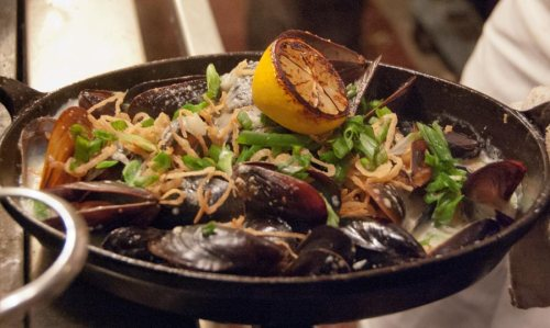 oftl-main_picture2-NYC-flexmussels1